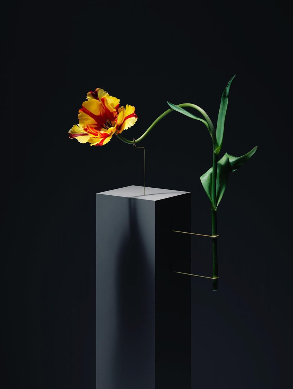 Postures by Carl Kleiner