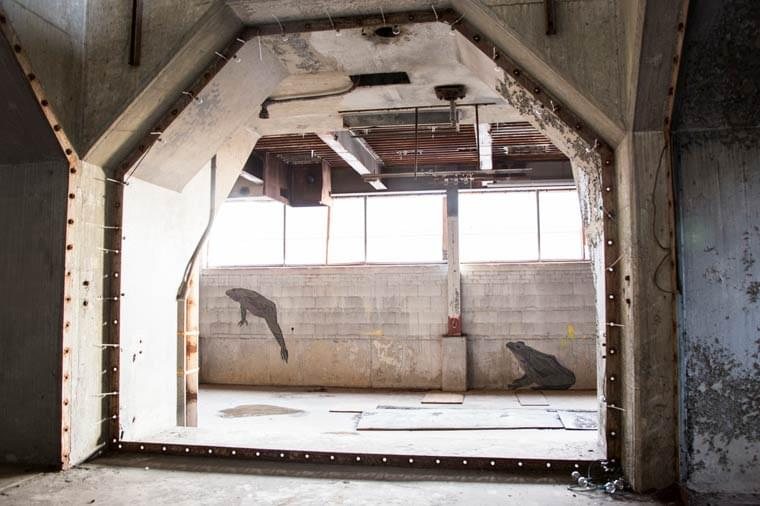 Moran Plant – When nature takes its course in an abandoned factory