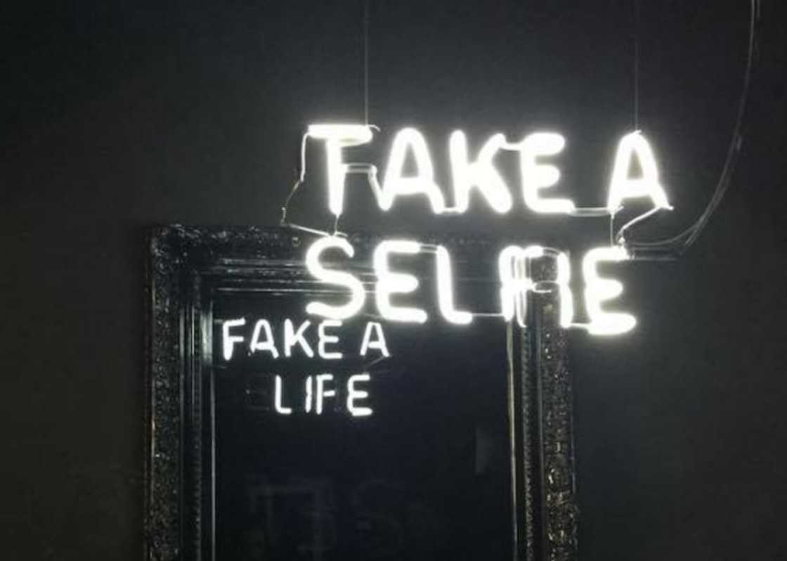 Fake a Life – Clever satirical mirrors with hidden messages