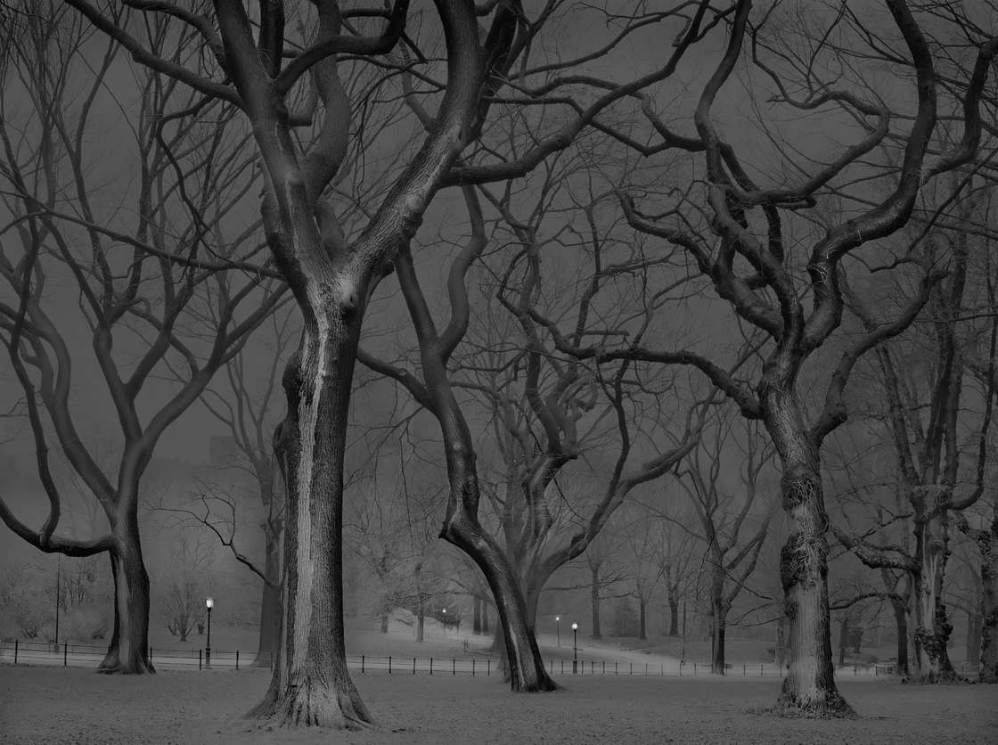 Alone in Central Park – An Insomniac photographer captures New York