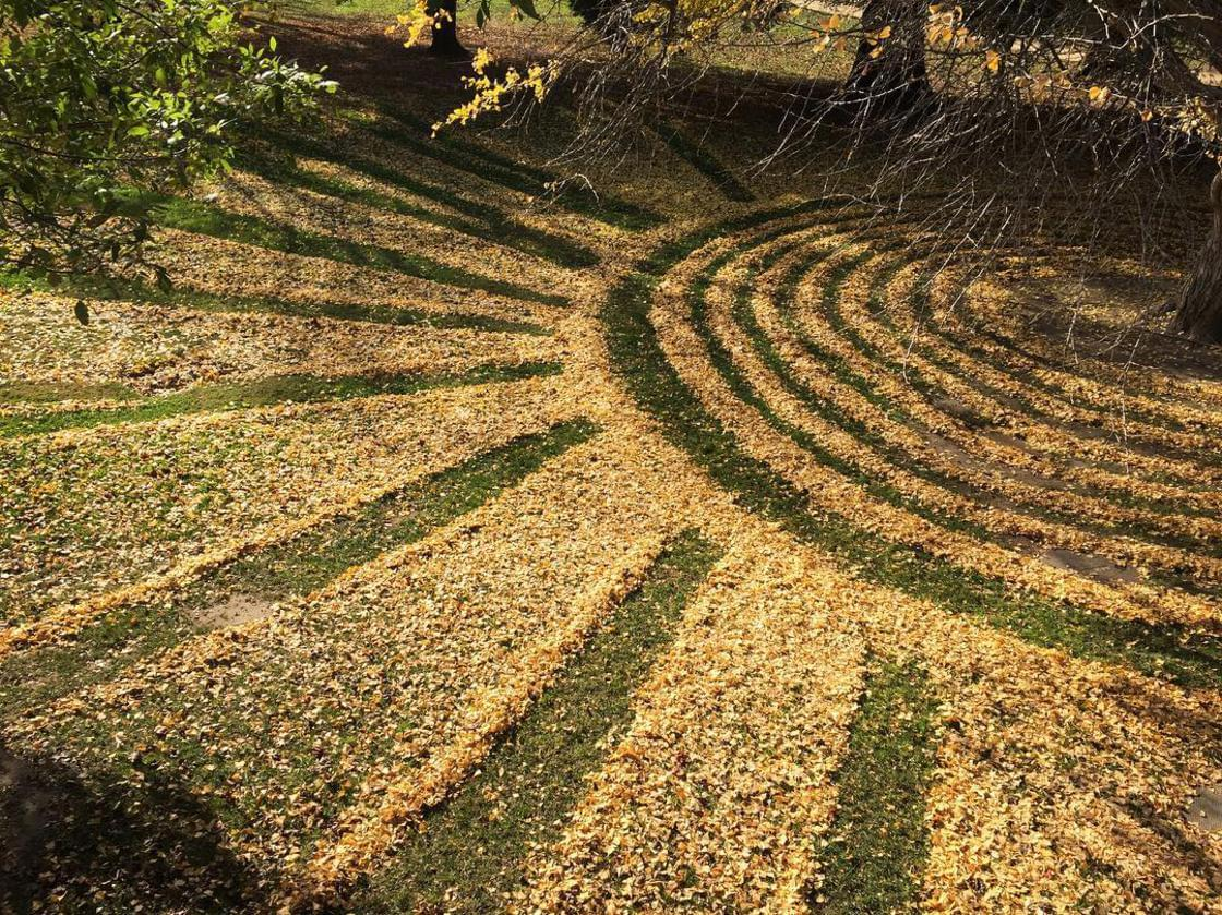 She transforms dead leaves into beautiful Land Art creations
