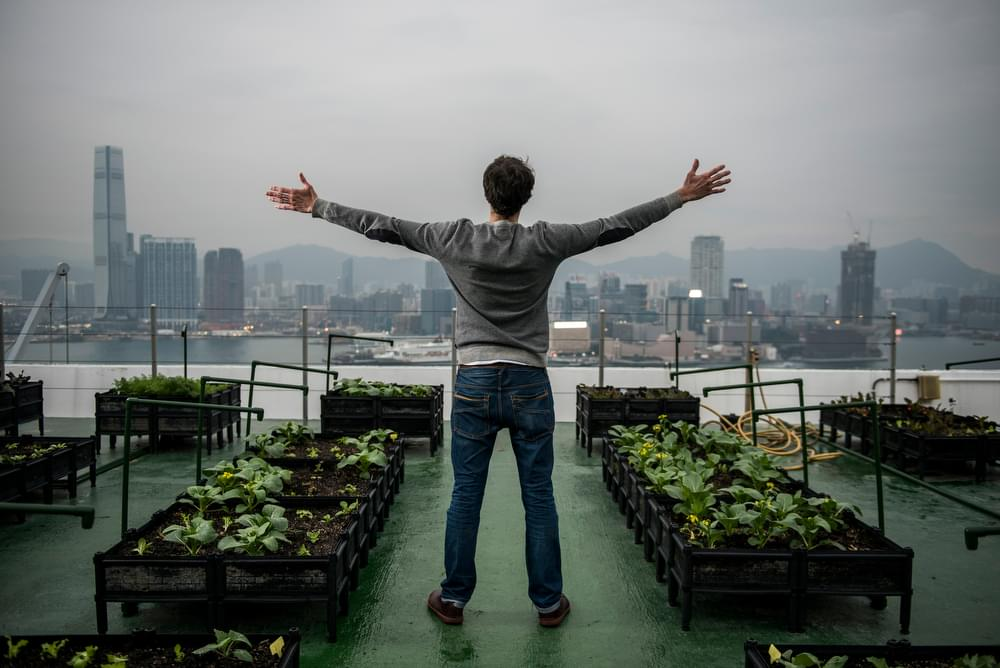 Rooftop Republic, a social enterprise whose aim is to advance urban farming around Hong Kong